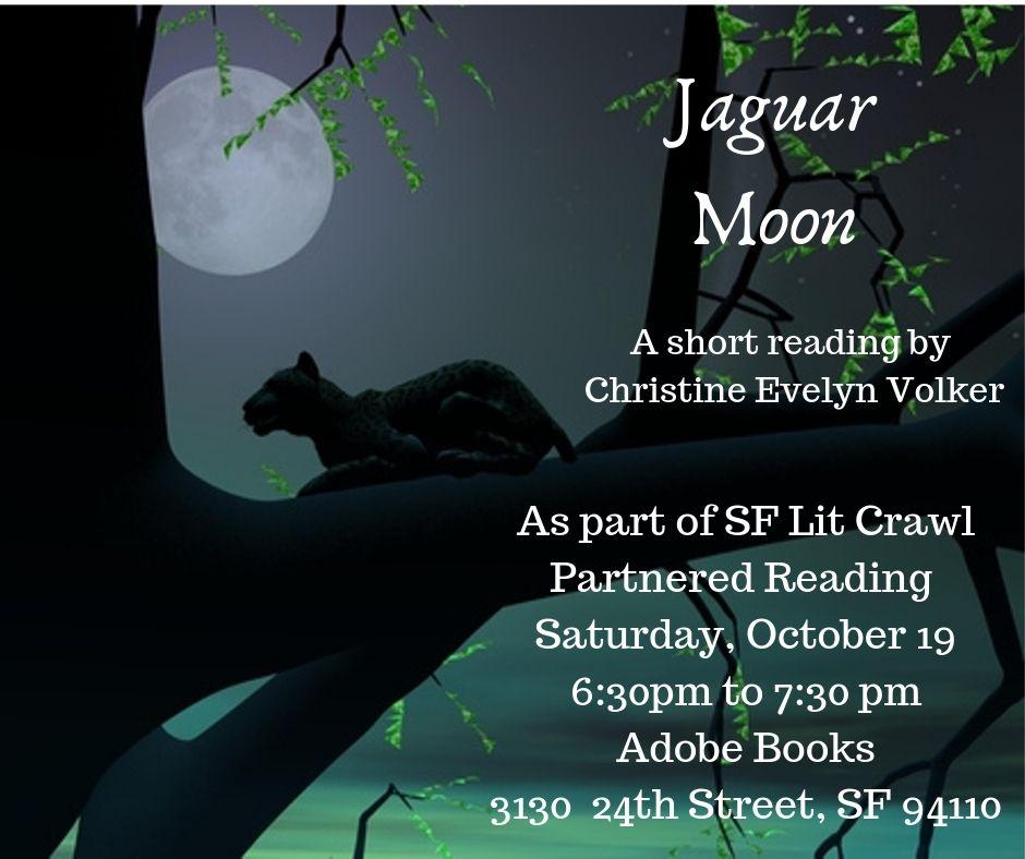 Jaguar Moon by Christine Evelyn Volker